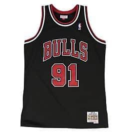 free shipping e8aa3 f4a12 Dennis Rodman Swingman Jersey Chicago Bulls Mitchell & Ness ...