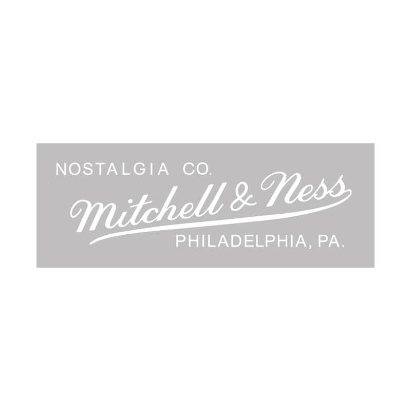 Grey Tonal Logo Snapback  Mitchell & Ness