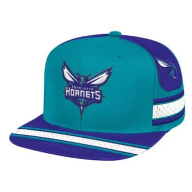 new style e92d7 df286 Charlotte Hornets Throwback Apparel & Jerseys | Mitchell ...