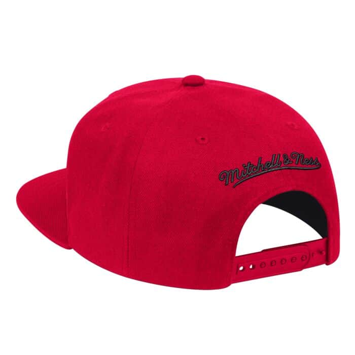 competitive price hot product official store Wool Solid Snapback Toronto Raptors - Shop Mitchell & Ness ...