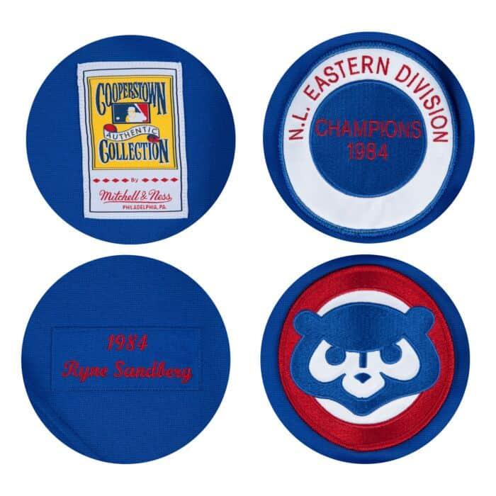 0666c2aa0 Ryne Sandberg 1984 Authentic Jersey Chicago Cubs Mitchell & Ness ...
